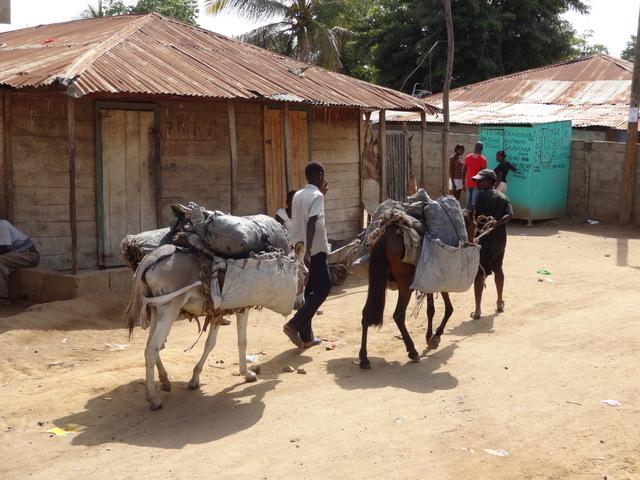 haiti2012-karens-127